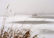 湖冬天 免版税图库摄影