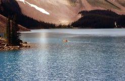 湖冰碛的划独木舟的人 免版税库存图片