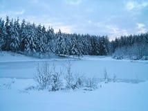 湖冰 免版税图库摄影