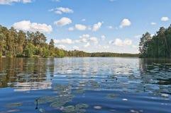湖到森林里 免版税图库摄影
