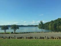 湖前面 库存照片