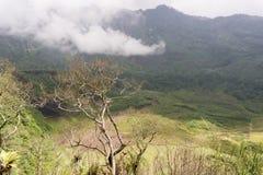 湖加隆贡火山 免版税图库摄影