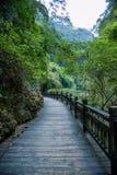 湖北夷陵长江三峡`三峡人`小河人民的Dengying夏 图库摄影