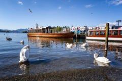 湖区巡航英国 免版税库存照片