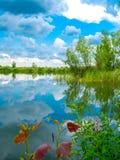 湖反射在春天 库存照片