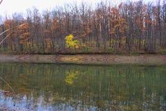 湖反射在秋天 免版税库存图片