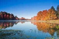 湖反射 库存照片