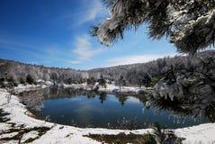 湖反映冬天 免版税库存照片