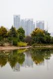 湖和反映 免版税库存图片