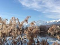 湖和山在冬天在瑞士 免版税库存照片