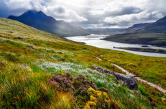湖和山, Inverpolly,苏格兰的风景看法 库存图片