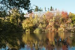 湖和教会 库存照片