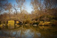 湖和日本庭院 免版税库存照片