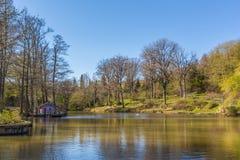 湖和春天 免版税库存图片