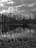 湖和树全景视图与剧烈的云彩 免版税库存图片