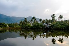 湖和棕榈的可爱的看法在多云早晨天空的热带森林里 免版税库存照片