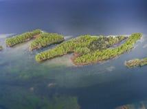湖和森林在春天 在视图之上 Pogoria IV 图库摄影
