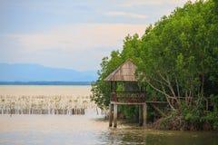湖和森林日落的-泰国 免版税库存照片
