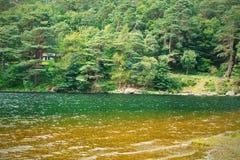 湖和森林横向 Glendalough谷在威克洛郡,爱尔兰 免版税库存照片