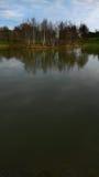湖和森林,垂直 库存照片