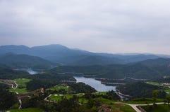 湖和森林 库存图片