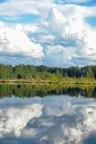 湖和森林 免版税图库摄影