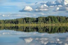 湖和森林 图库摄影