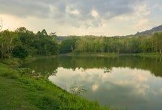 湖和热带雨林在多云天早晨 免版税库存照片