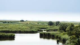 湖和草甸 免版税库存照片