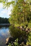 湖和豪华和嫩绿的森林在芬兰 免版税库存图片