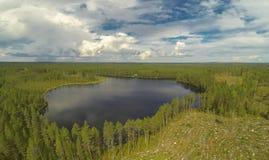 湖和采伐的森林 免版税库存图片
