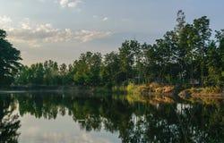 湖和结构树 库存图片