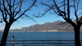 湖和结构树 库存照片