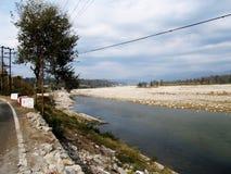 湖和结构树 免版税库存图片