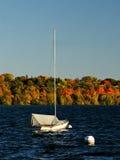 湖哈丽反对五颜六色的秋天叶子的帆船 免版税库存图片
