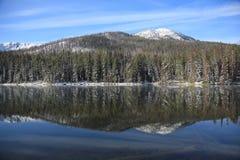 湖国家公园反映黄石 免版税库存照片