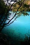 湖国家公园plitvice 免版税图库摄影