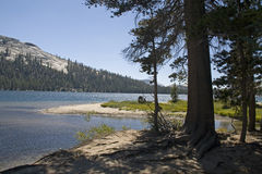 湖国家公园tenaya优胜美地 库存图片