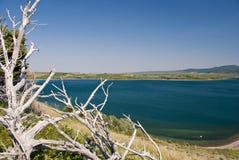 湖国家公园waterton 免版税图库摄影