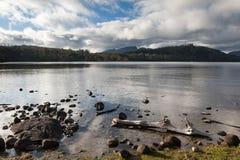 湖圣克莱尔塔斯马尼亚岛澳大利亚 免版税库存图片