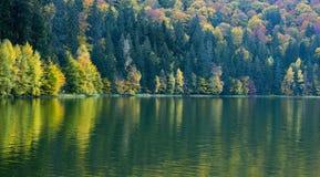湖圣徒阿那,罗马尼亚,秋天季节的 免版税库存照片