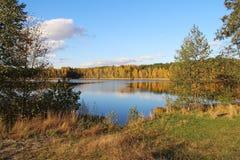 湖在一个令人愉快的秋天森林里晴天 俄国 免版税库存照片