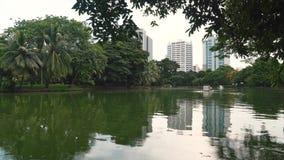 湖在一个大绿色公园在大都会的中心 高树和摩天大楼、自然和市区 股票视频