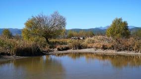 湖在与五颜六色的树的秋天 免版税图库摄影