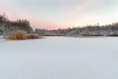 冻湖在与新鲜的下落的雪的黎明 库存图片