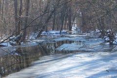 冻湖在与树的冬天在背景中 免版税图库摄影