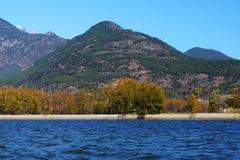 湖在与金黄树的秋天 库存图片