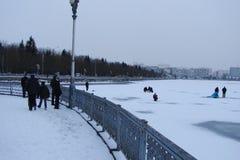 湖在乌克兰市的中心捷尔诺波尔 免版税图库摄影
