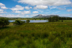 湖在五颜六色的草甸,爱尔兰共和国 库存照片