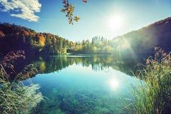 湖在克罗地亚的森林里 库存图片